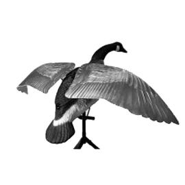 Motorized Goose Decoys