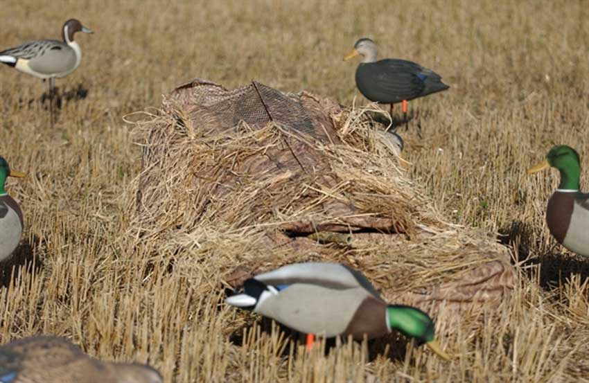 Avery Outdoors GHG Ground Force Layout Blind in Mossy Oak Shadow Grass Blades_1.jpg