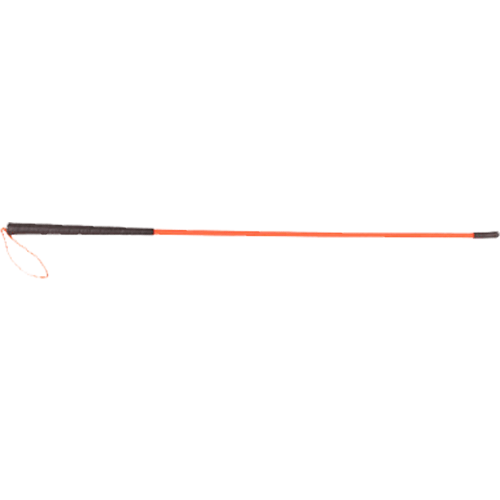 Avery Trainer s Heeling Stick_1.png
