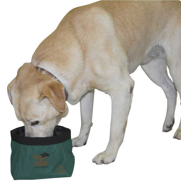 Avery EZStor Collapsible Dog Bowl