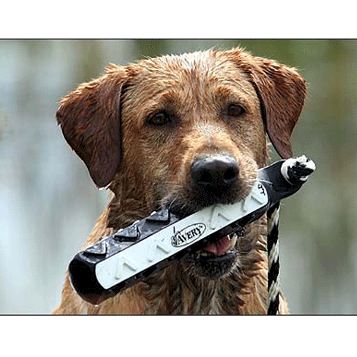 "Avery HexaBumper Hunting Dog Training 2"" Bumpers_1.png"