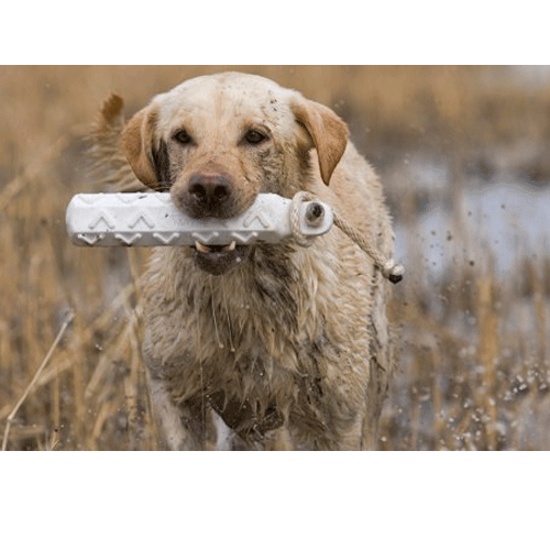 "Avery Hunting Dog HexBumper 2"" Bumpers - 6-Pack_1.png"