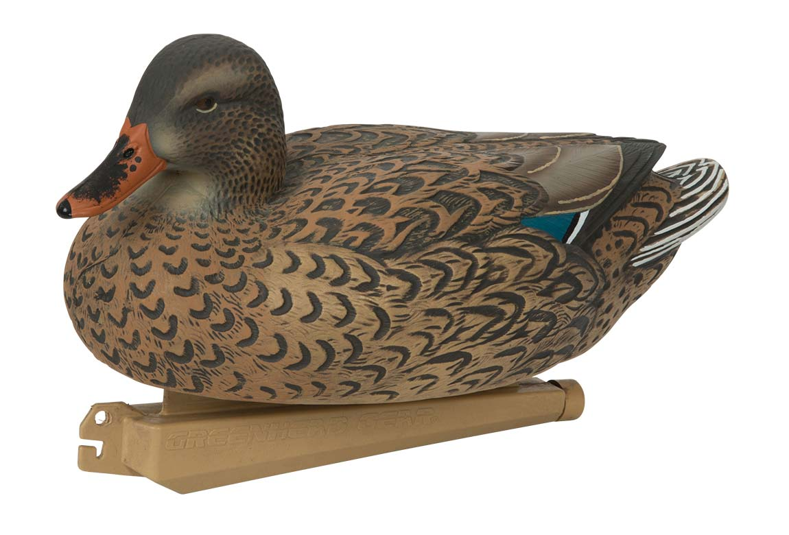 Avery Essential Series Mallard, 12 Pack_10.jpg