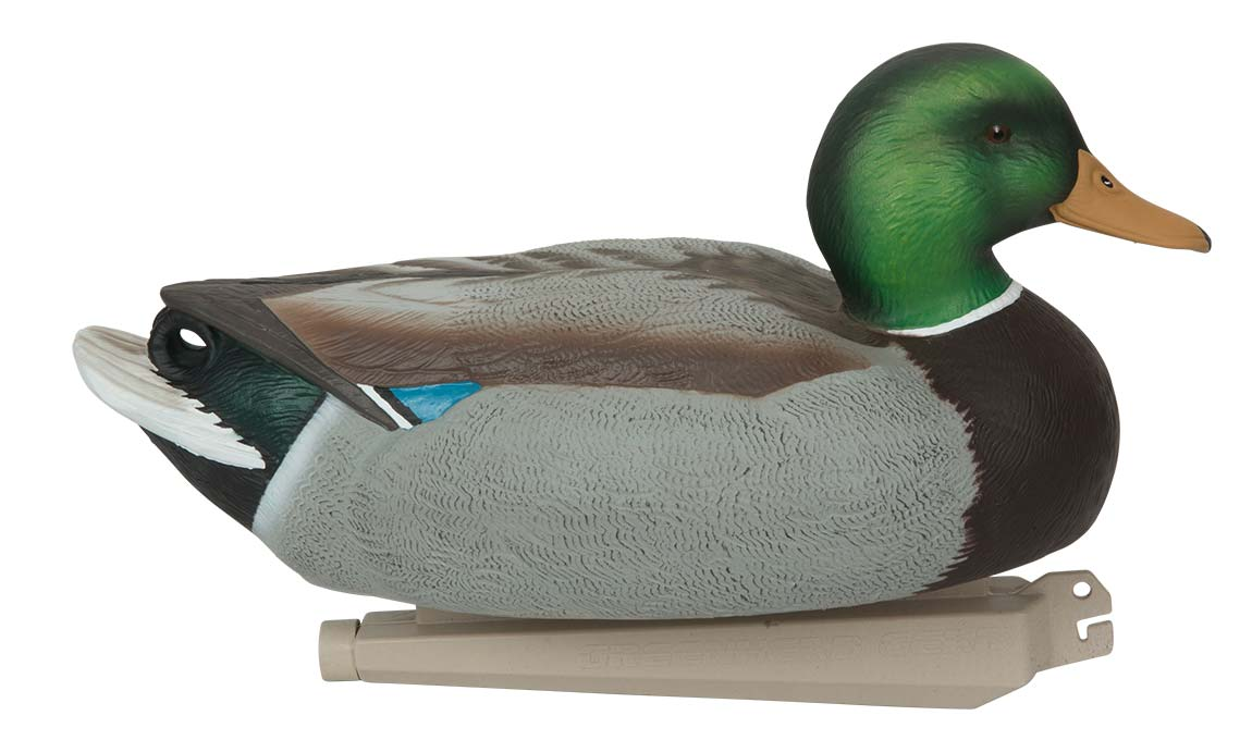 Avery Essential Series Mallard, 12 Pack_2.jpg