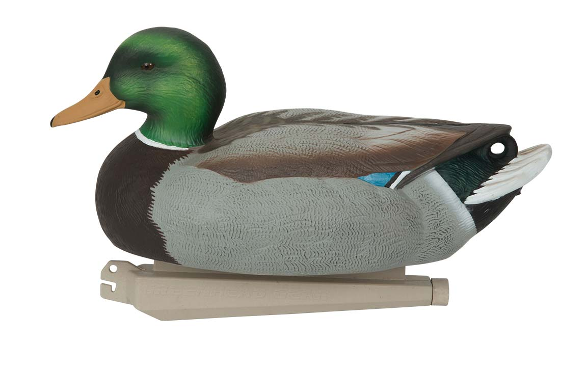 Avery Essential Series Mallard, 12 Pack_4.jpg