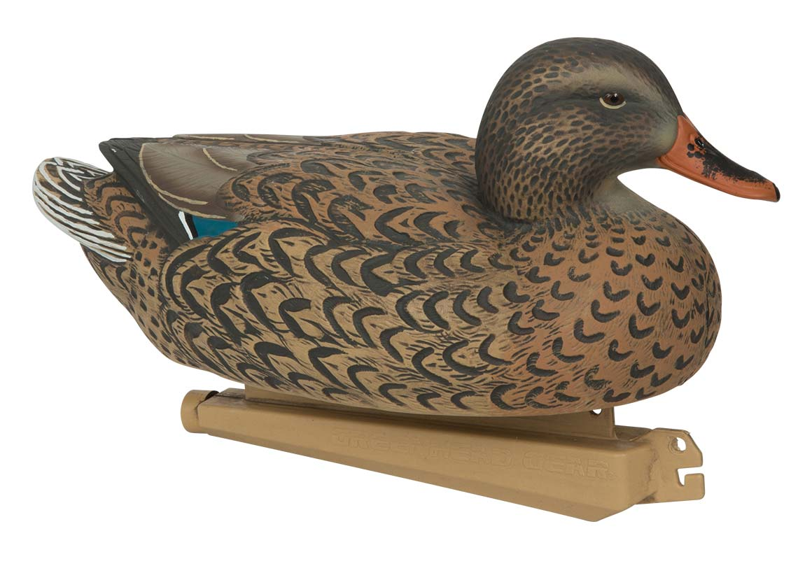 Avery Essential Series Mallard, 12 Pack_8.jpg