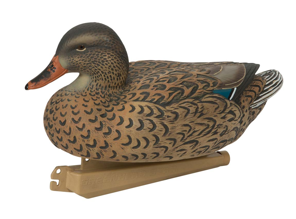 Avery Essential Series Mallard, 12 Pack_9.jpg
