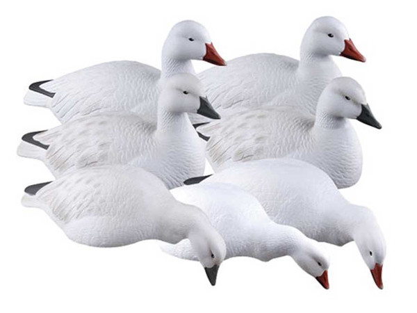 Avery GHG Snow Goose Shells, Harvester 12 Pack