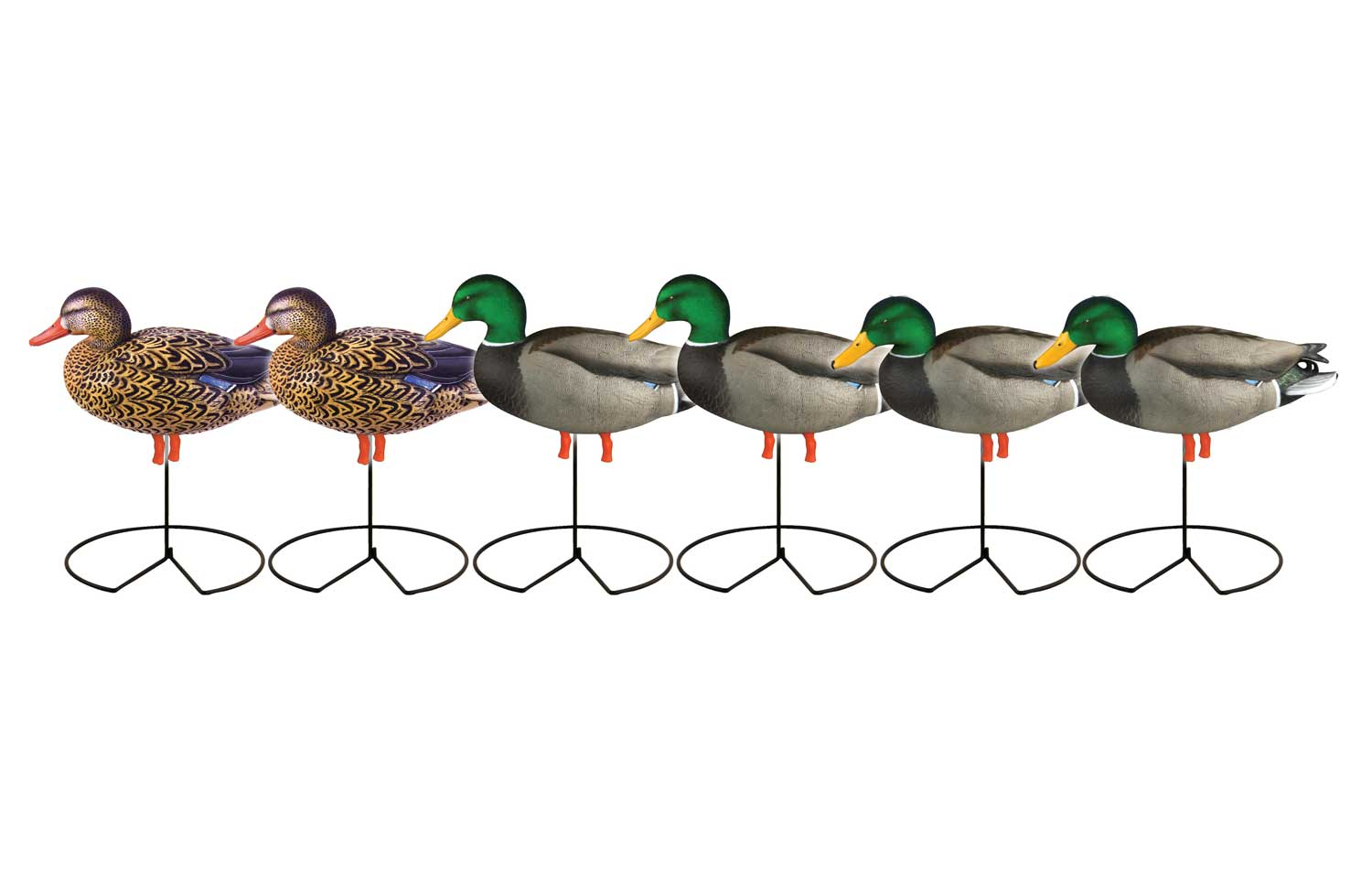 Avery GHG Pro-Grade™ Full Body Mallard Actives 6 Pack_2.jpg