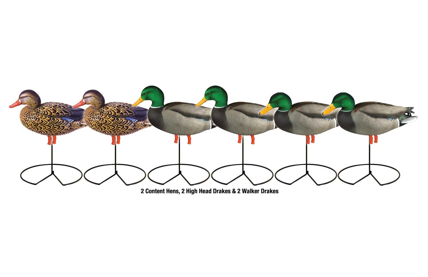 Avery GHG Pro-Grade™ Full Body Mallard Actives 6 Pack_3.jpg