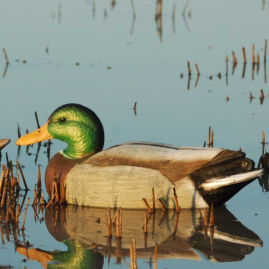Avery GHG Over-Size Series Mallard Floaters, 6 Pack_3.jpg