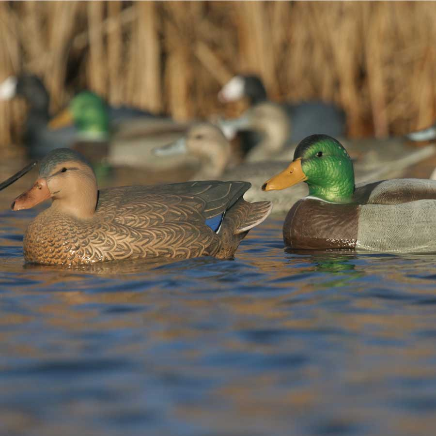 Avery GHG Over-Size Series Mallard Floaters, 6 Pack_4.jpg