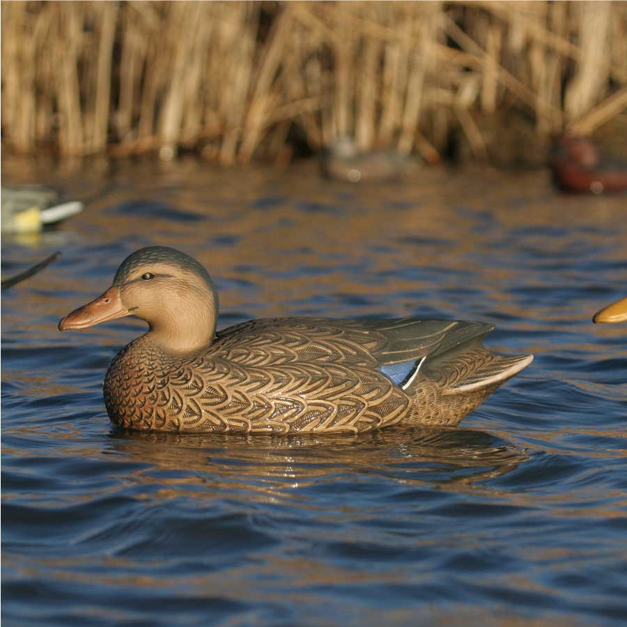 Avery GHG Over-Size Series Mallard Floaters, 6 Pack_6.jpg