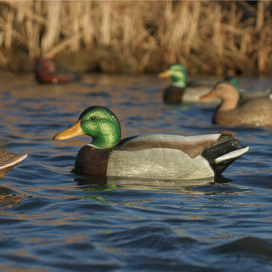 Avery GHG Over-Size Series Mallard Floaters, 6 Pack_7.jpg