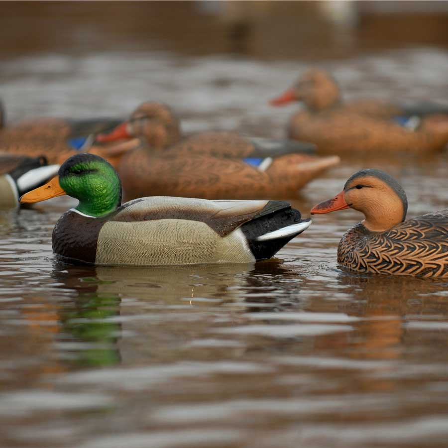 Avery GHG Over-Size Series Mallard Floaters, 6 Pack_8.jpg