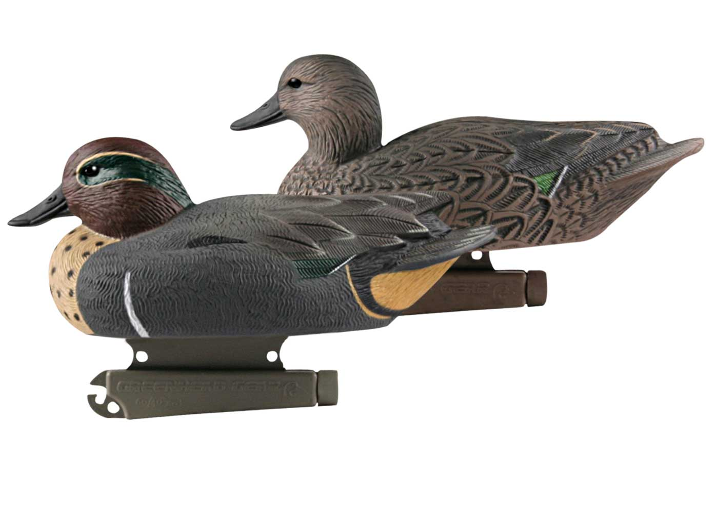 Avery GHG Life-Sized Floating Green-Winged Teal Decoys, 6 Pack