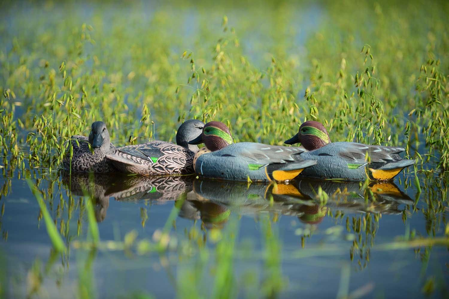 Avery GHG Life-Sized Floating Green-Winged Teal Decoys, 6 Pack_10.jpg