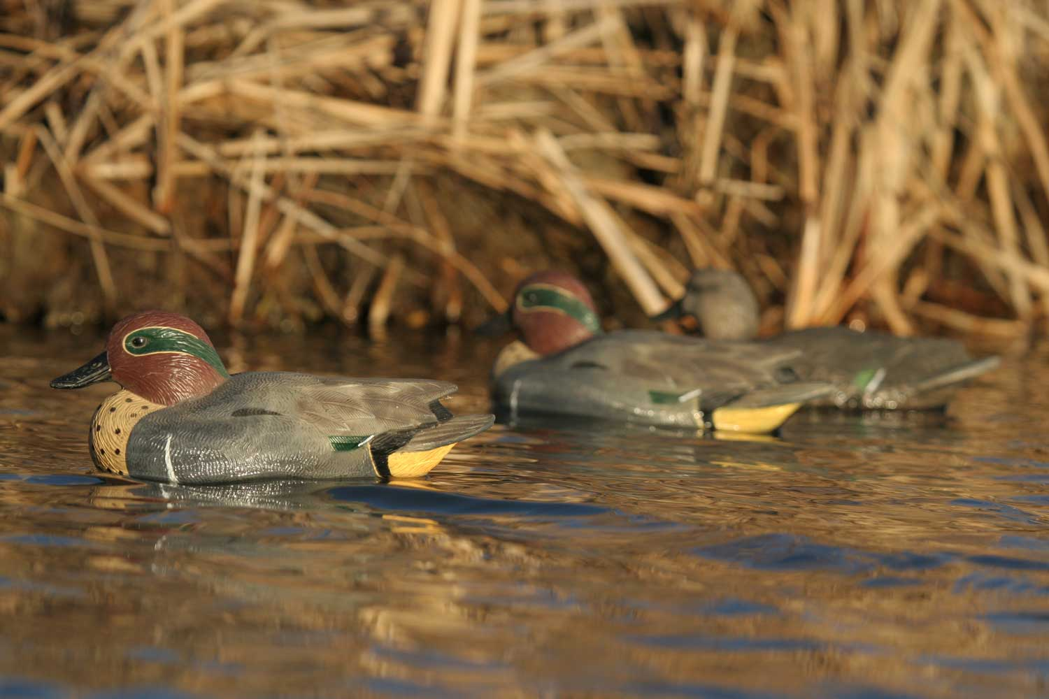 Avery GHG Life-Sized Floating Green-Winged Teal Decoys, 6 Pack_6.jpg