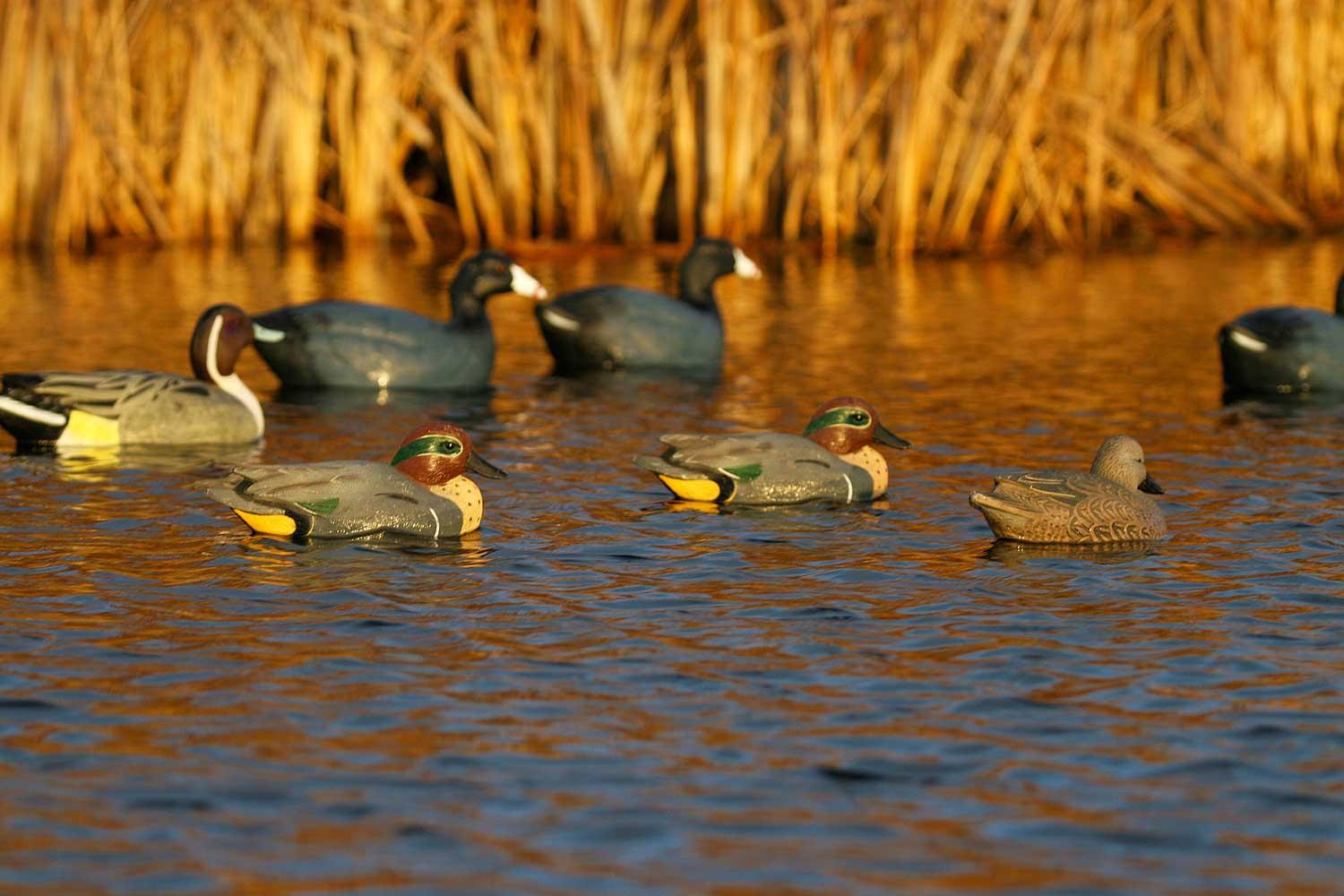 Avery GHG Life-Sized Floating Green-Winged Teal Decoys, 6 Pack_8.jpg