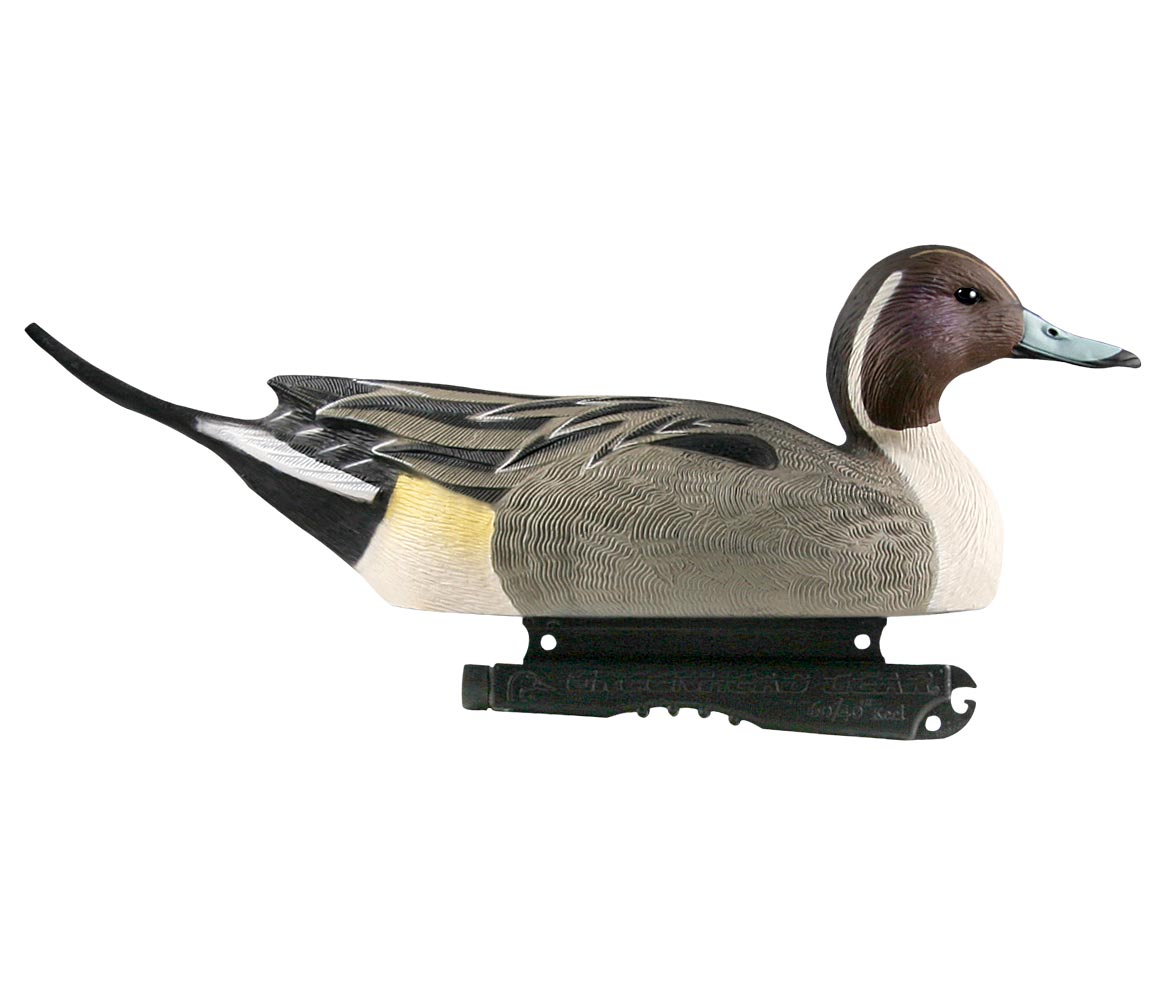 Avery GHG Life-Size Pintails, 6 Pack_1.jpg