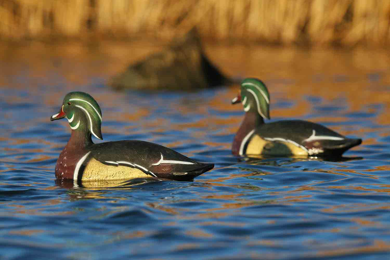 Avery GHG Life-Size Wood Ducks, 6 Pack_1.jpg
