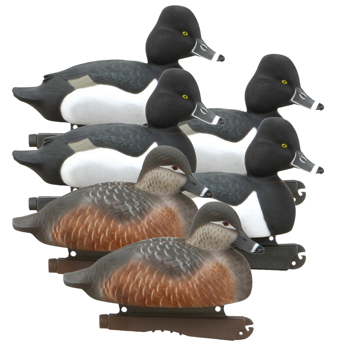 Avery GHG Life Size Ring-Necked Duck Decoys, 6 Pack