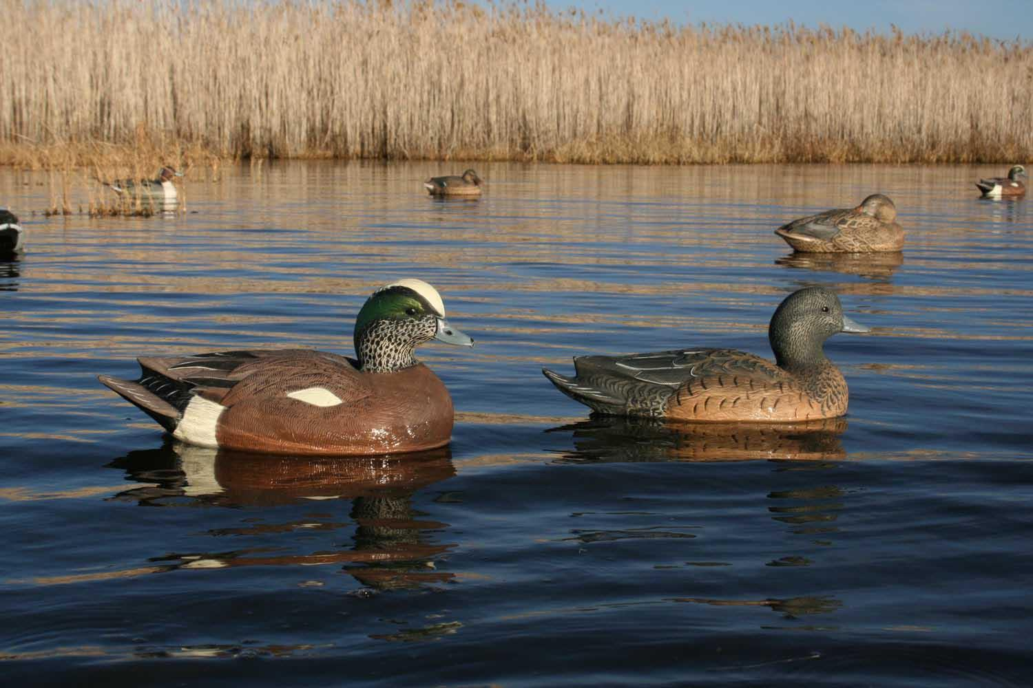 Avery GHG Life-Size Wigeons, 6 Pack_4.jpg