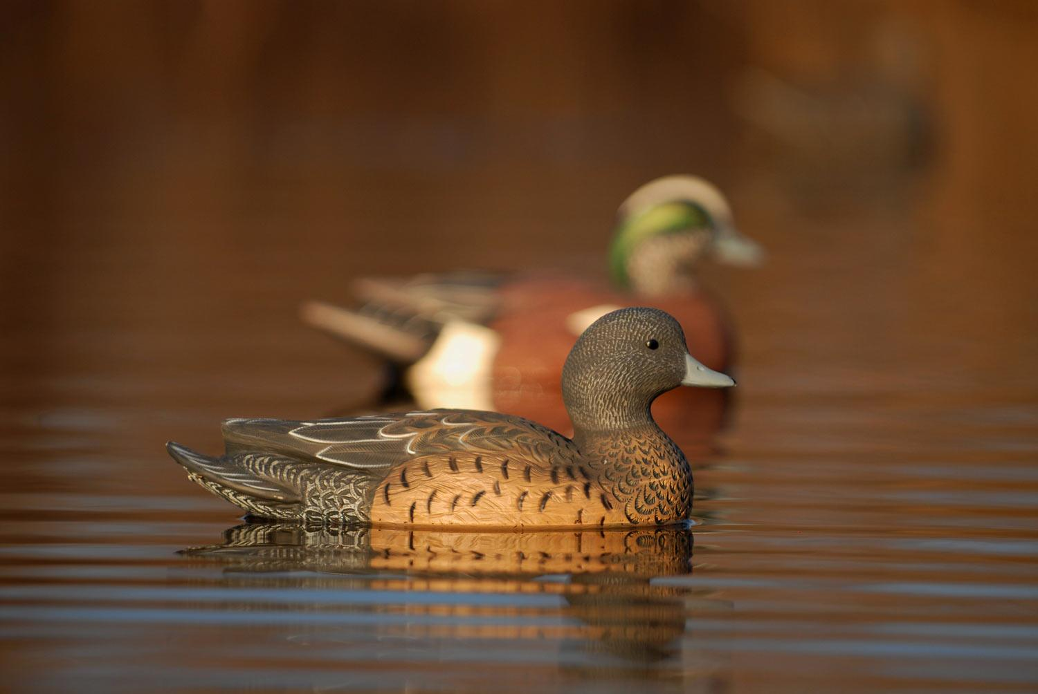 Avery GHG Life-Size Wigeons, 6 Pack_5.jpg