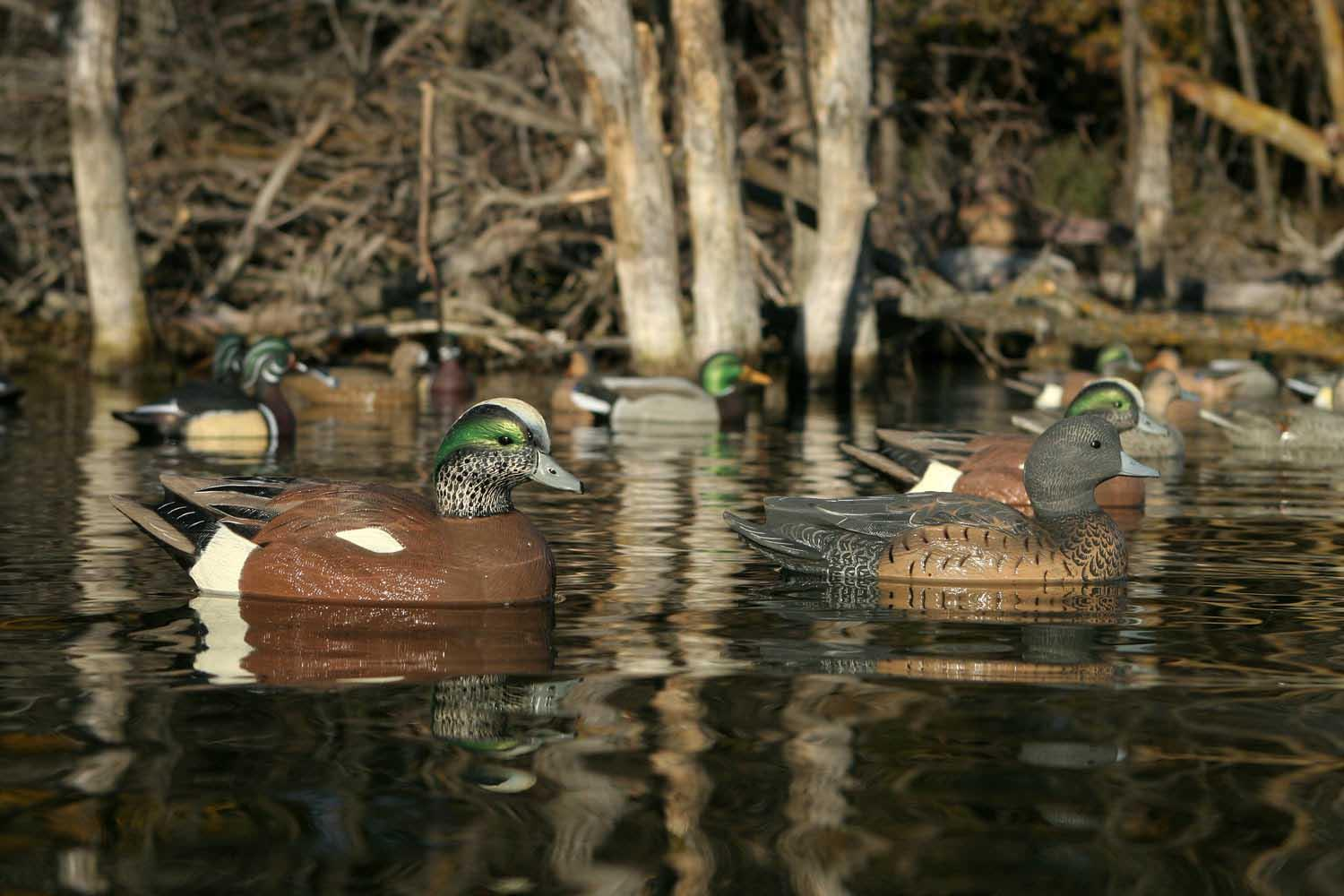 Avery GHG Life-Size Wigeons, 6 Pack_7.jpg