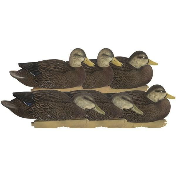 Avery Pro-Grade FFD Black Ducks Harvester Pack - 6 pack_1.jpg