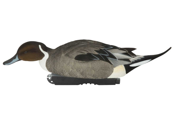 Avery Pro-Grade Fully Flocked Pintails, 6 pack