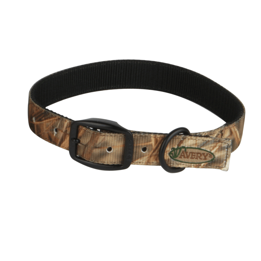 Avery Standard Dog Collar_1.png