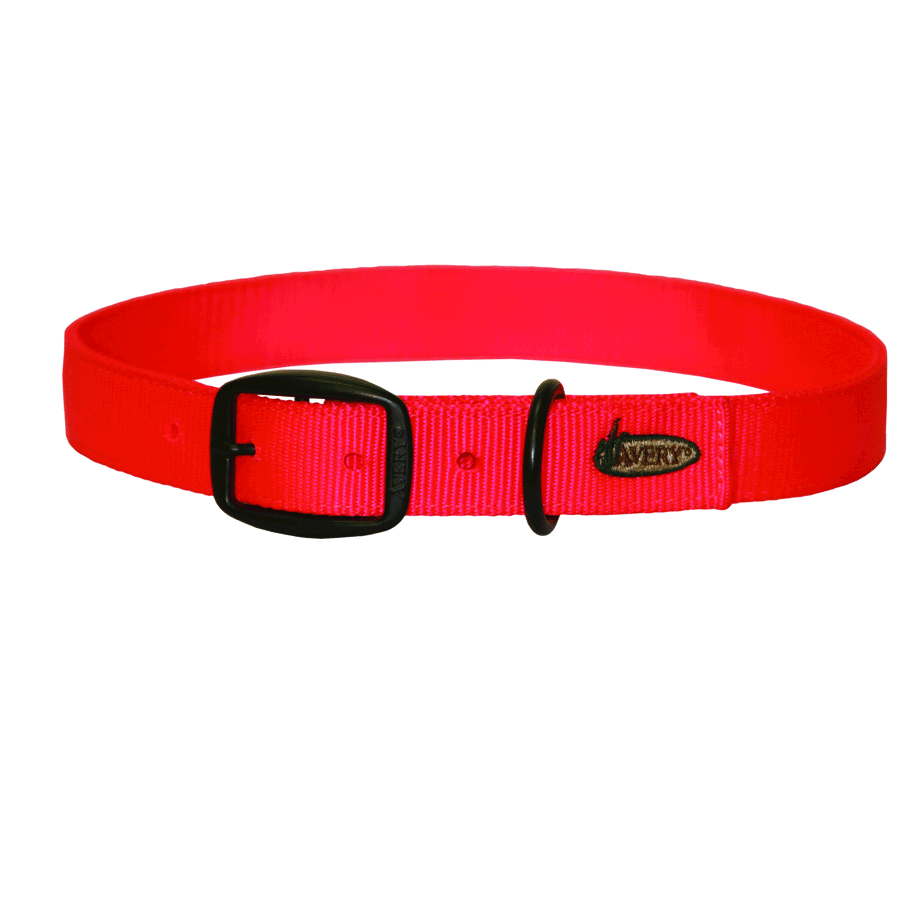 Avery Standard Dog Collar_2.png