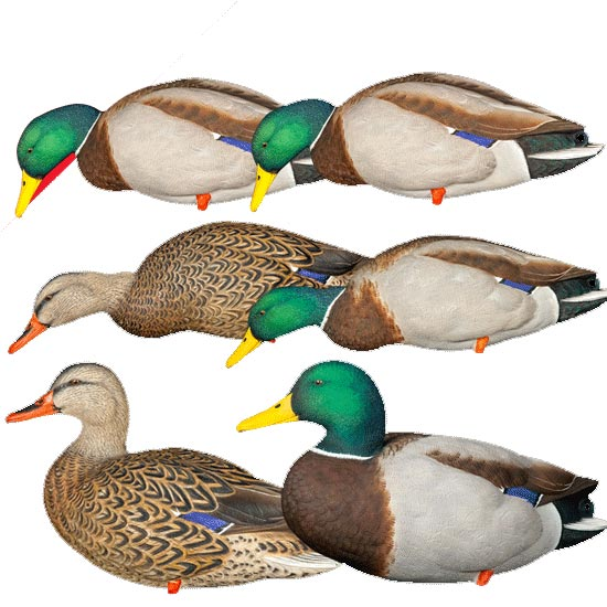 Avian-X AXP Over-Sized Full Body Mallard Decoys - 6 Pack with Slotted Decoy Bag_1.jpg