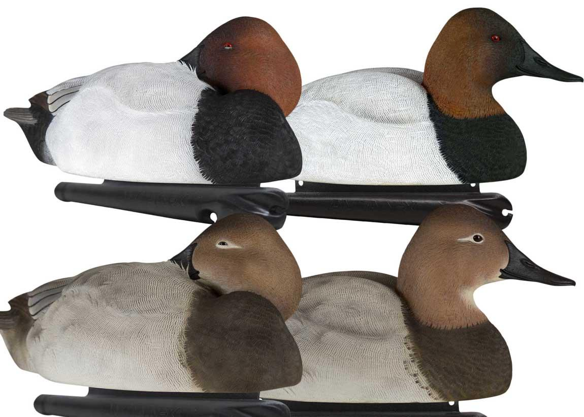 Avian-X Topflight Canvasbacks, 6 Pack_1.jpg