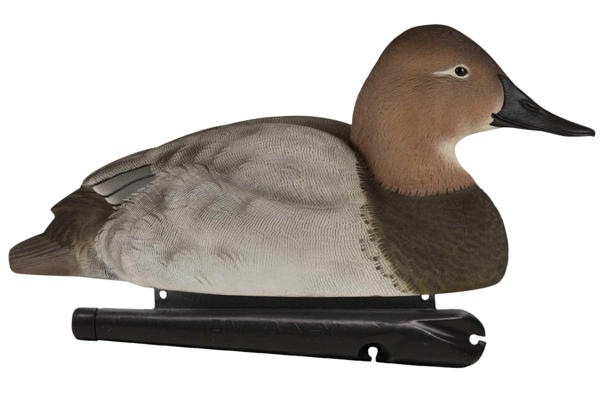 Avian-X Topflight Canvasbacks, 6 Pack_2.jpg