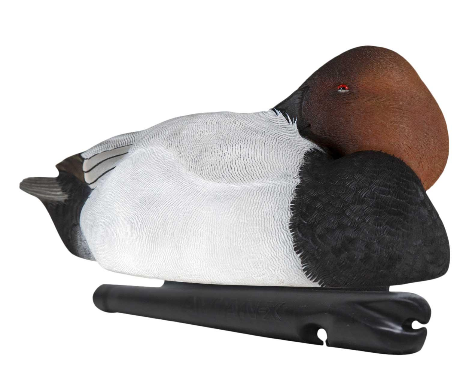Avian-X Topflight Canvasbacks, 6 Pack_3.jpg