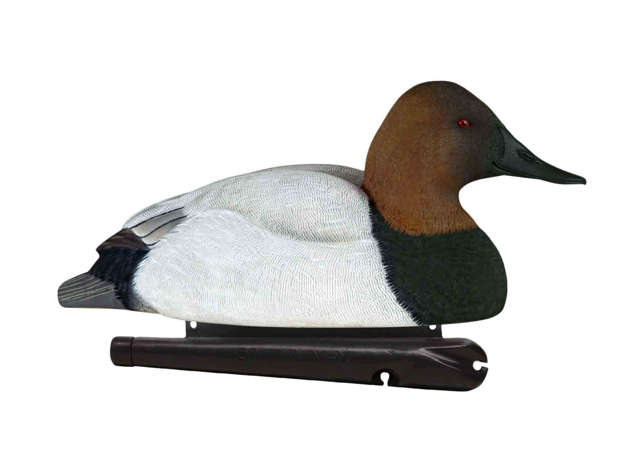 Avian-X Topflight Canvasbacks, 6 Pack_5.jpg
