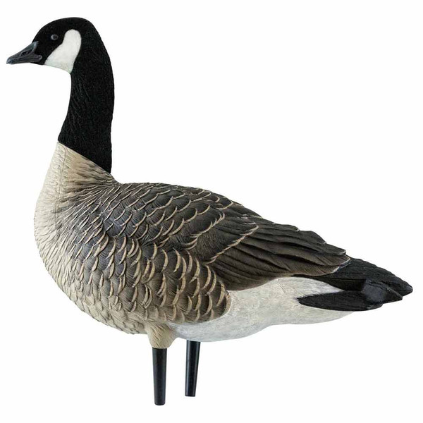 Avian-X AXP Outfitter Lesser 12 Pack with 12-Slot Decoy Bag