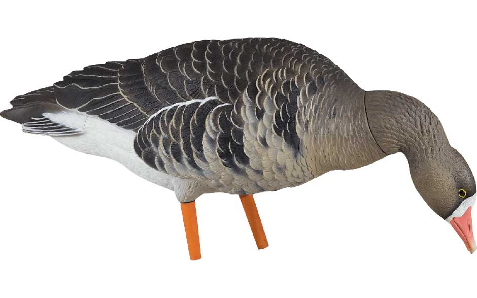 Avian-X AXP Painted Fusion Specklebelly Geese, 6 Pack_5.jpg