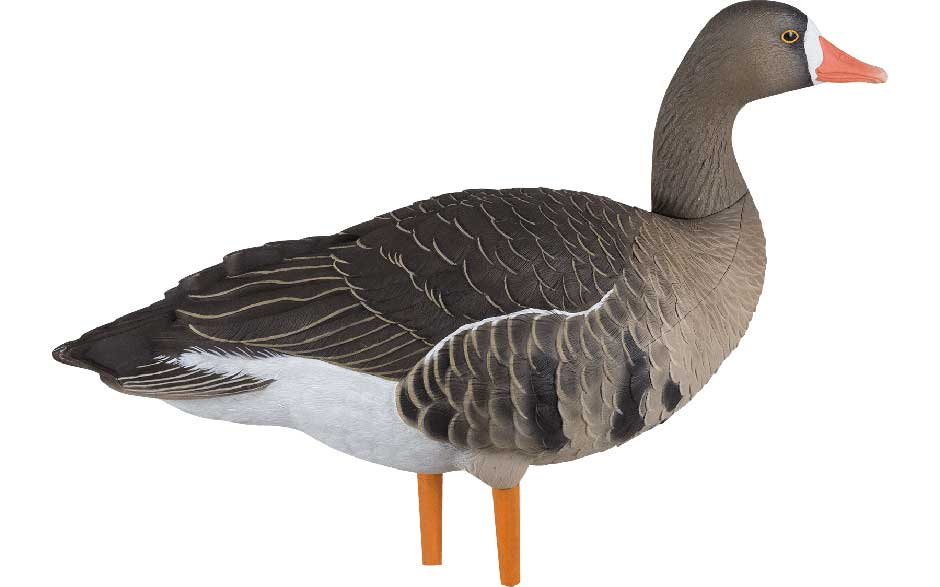 Avian-X AXF Flocked Fusion Specklebelly Geese, 6 Pack_2.jpg