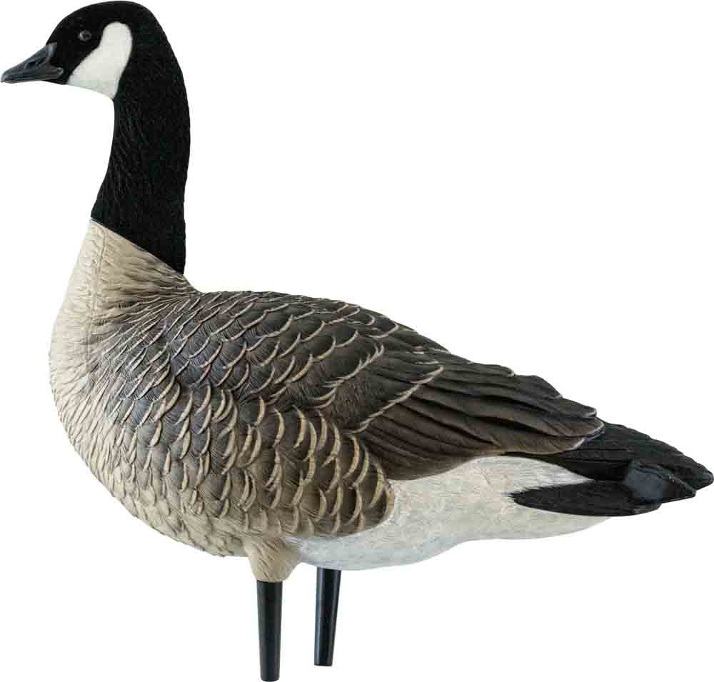 Avian-X AXF Outfitter Lesser Pack Fully Flocked Decoys, 12 Pack with Slotted Decoy Bag_1.jpg