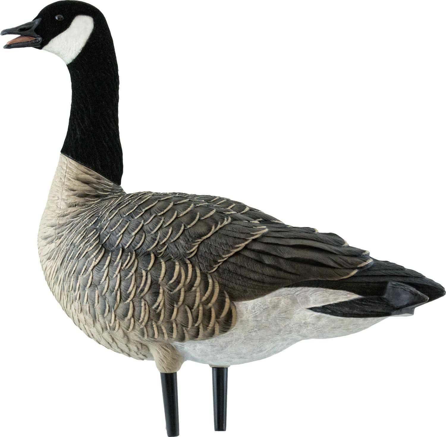 Avian-X AXF Outfitter Lesser Pack Fully Flocked Decoys, 12 Pack with Slotted Decoy Bag_10.jpg