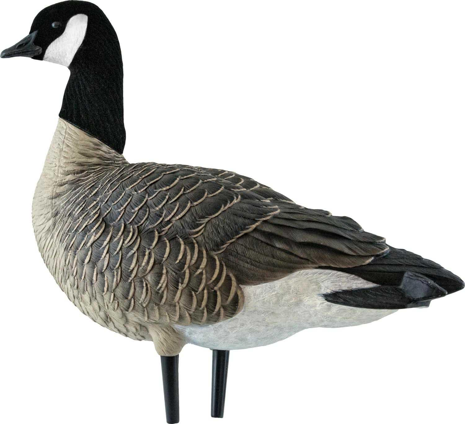 Avian-X AXF Outfitter Lesser Pack Fully Flocked Decoys, 12 Pack with Slotted Decoy Bag_2.jpg