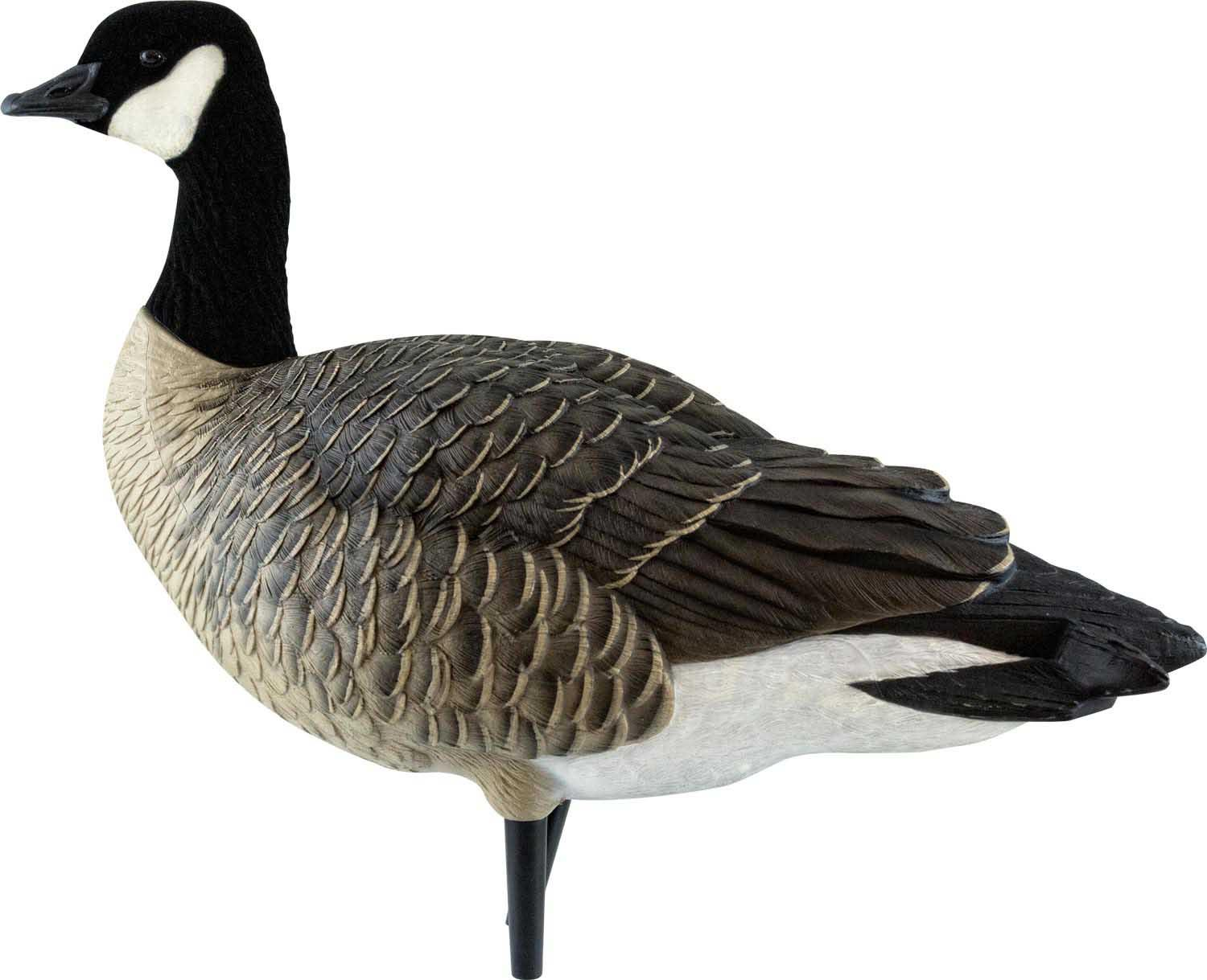 Avian-X AXF Outfitter Lesser Pack Fully Flocked Decoys, 12 Pack with Slotted Decoy Bag_3.jpg