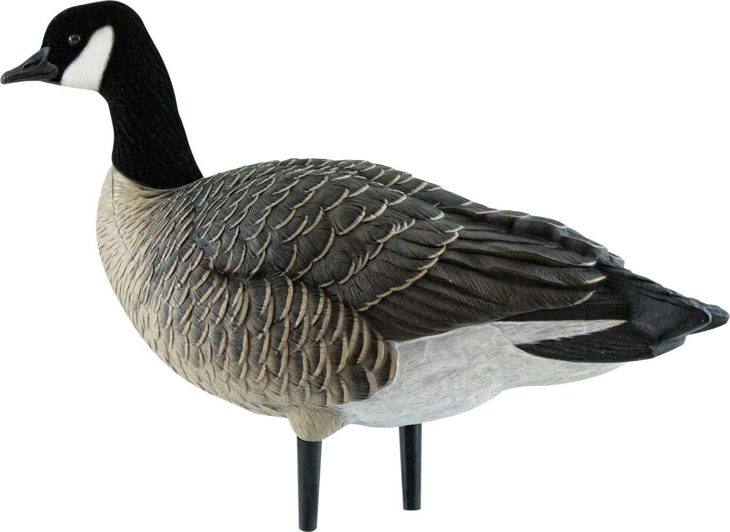 Avian-X AXF Outfitter Lesser Pack Fully Flocked Decoys, 12 Pack with Slotted Decoy Bag_4.jpg