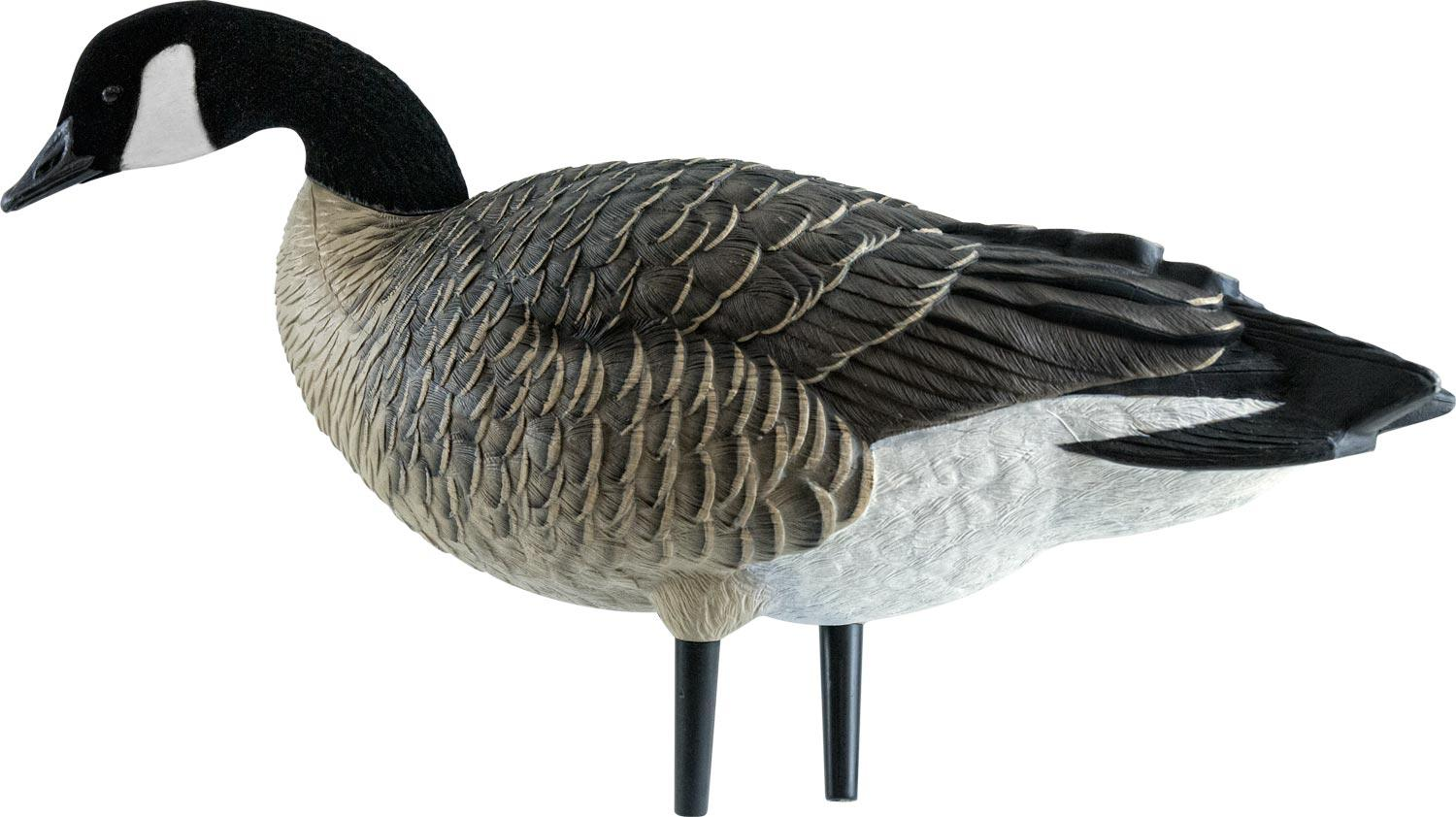 Avian-X AXF Outfitter Lesser Pack Fully Flocked Decoys, 12 Pack with Slotted Decoy Bag_7.jpg