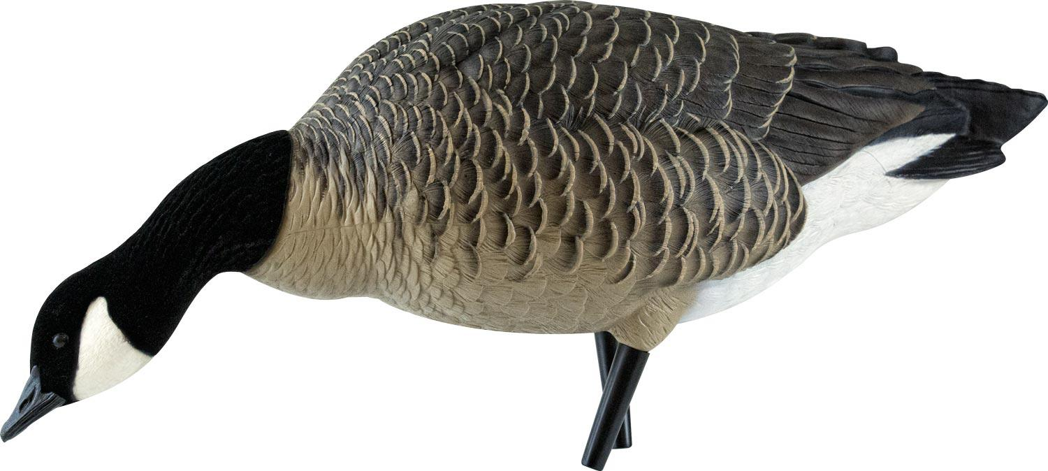 Avian-X AXF Outfitter Lesser Pack Fully Flocked Decoys, 12 Pack with Slotted Decoy Bag_8.jpg