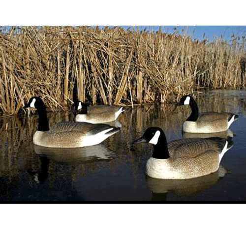 BigFoot Floating Canada Goose Decoy, Pack of 4_2.png