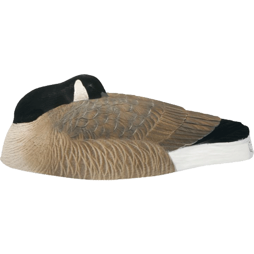 Big Foot Oversized Canada Goose Sleeper Shells - 6 Pack_1.png